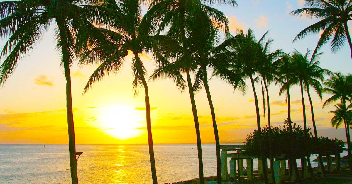 Charter bus rentals Honolulu Hawaii